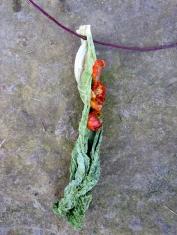 composition-végétale